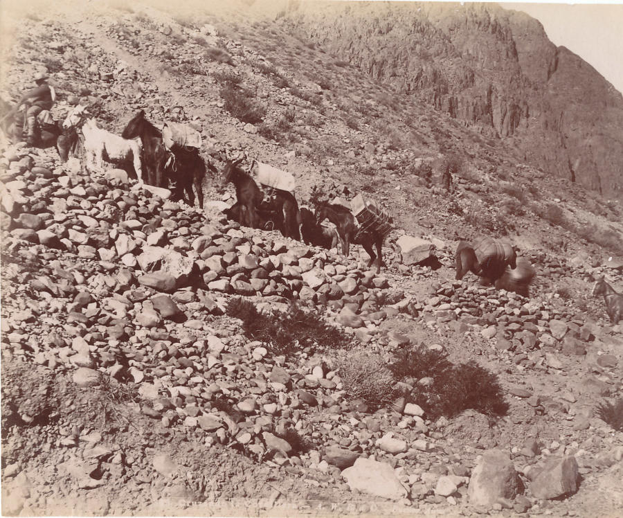 Wagon Train on a Mountin Pass Argentina C1890