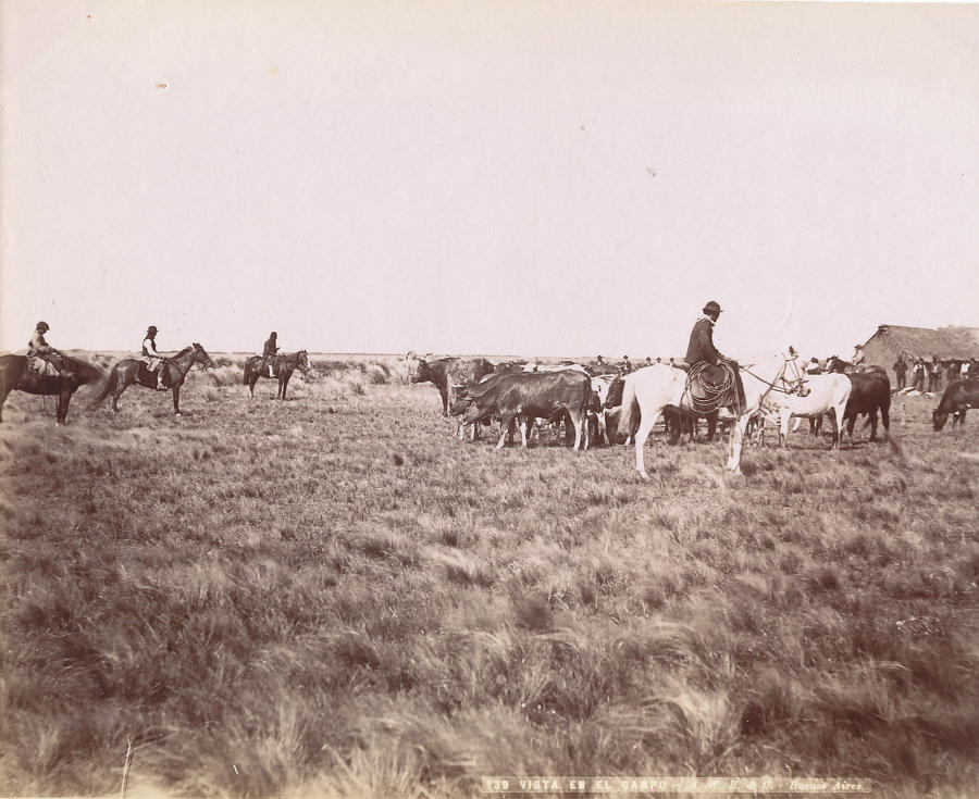The Cattle Round Up Argentina C1890