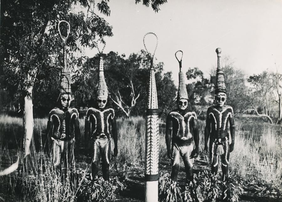 Aboriginal in Corroboree dress. Australia