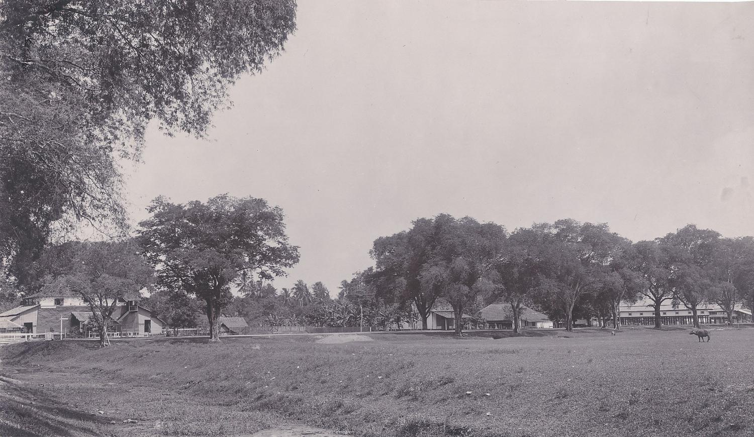 Village view in  Makassar Indonesia C1910