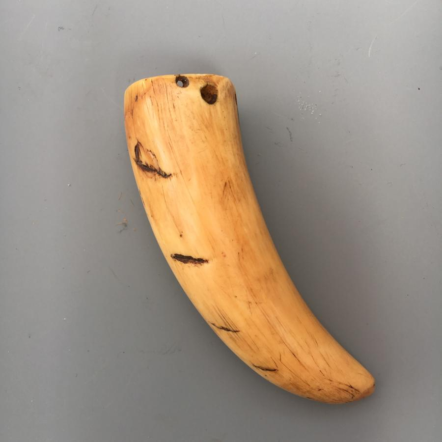 South Pacific Small Whales Tooth Pendent C1850