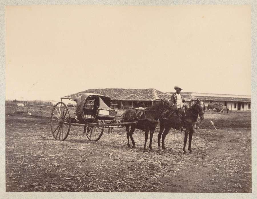 Horse Carriage Havana Cuba C1885