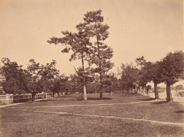 The Shameen Island Canton China 1883