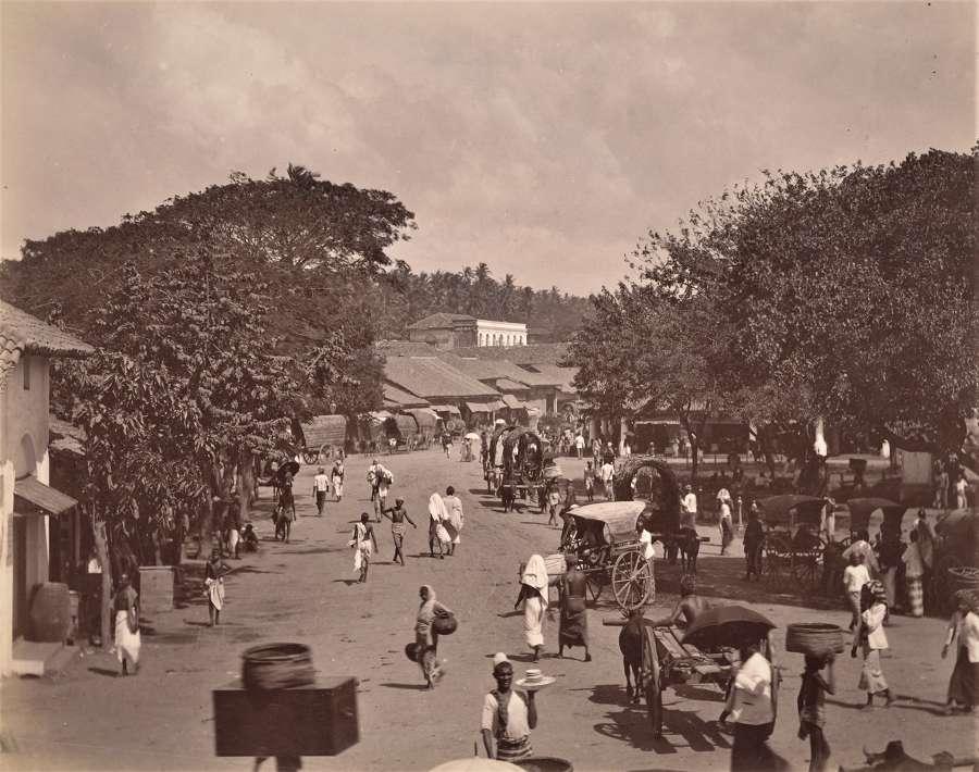 Street Scene Colombo Ceylon C1890