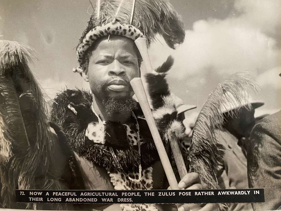 Zulu Warrior South Africa C1930