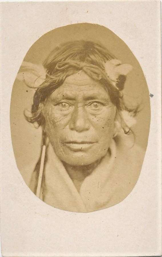 CDV Size Photo Maori Chief with Ear Ornament New Zealand C1875