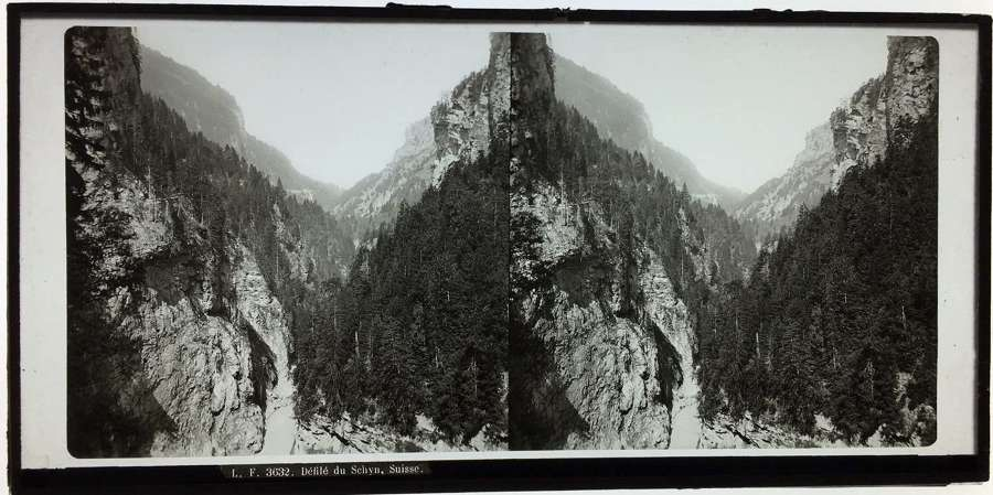 Stereo Glass view of Mountain View Switzerland C1860. No .LF3632