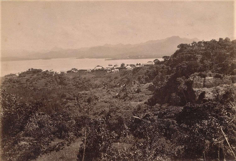 Panorama View of Suva the Capital of Fiji C1880