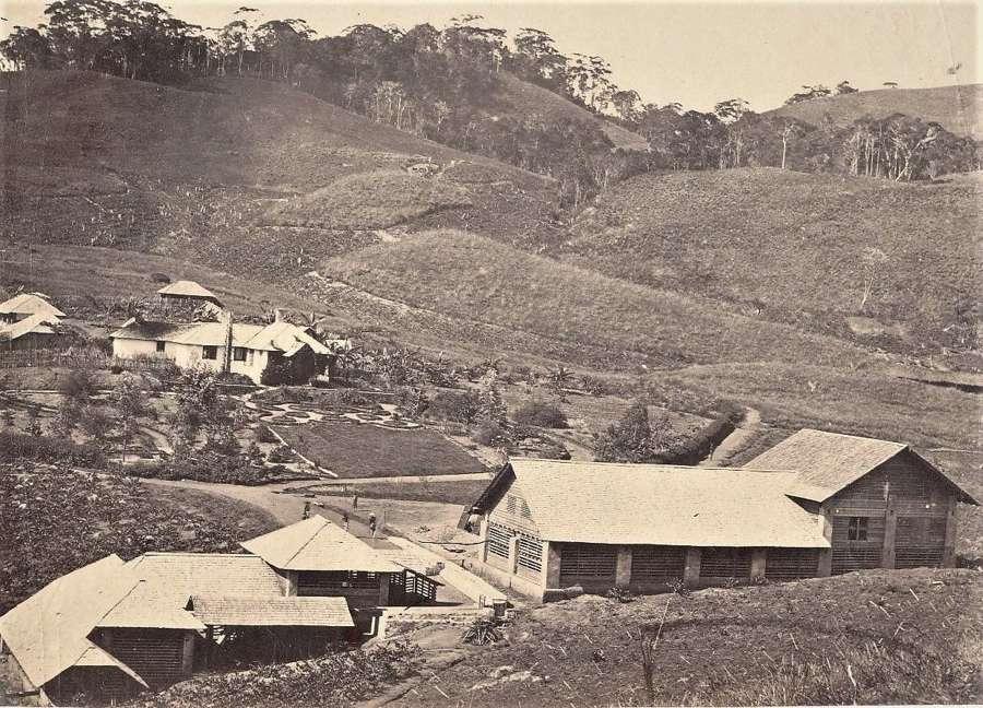 Village at the Tea PlantationCeylon C1860