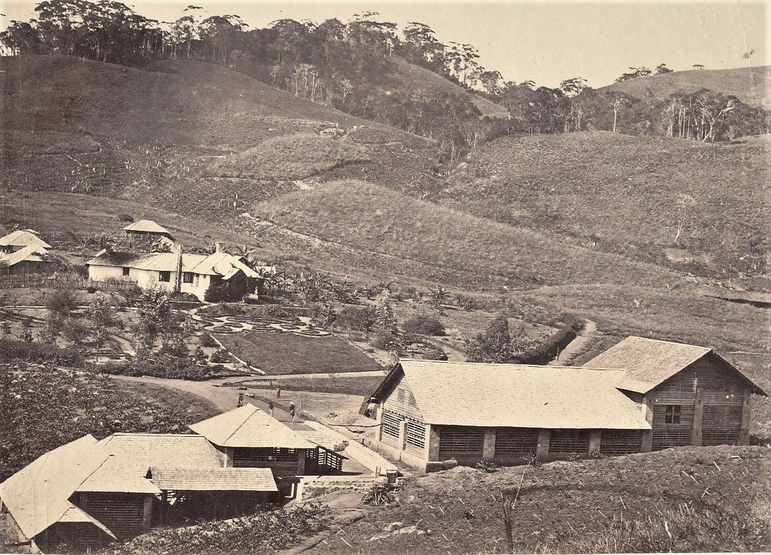 Village at the Tea Plantation Ceylon C1860
