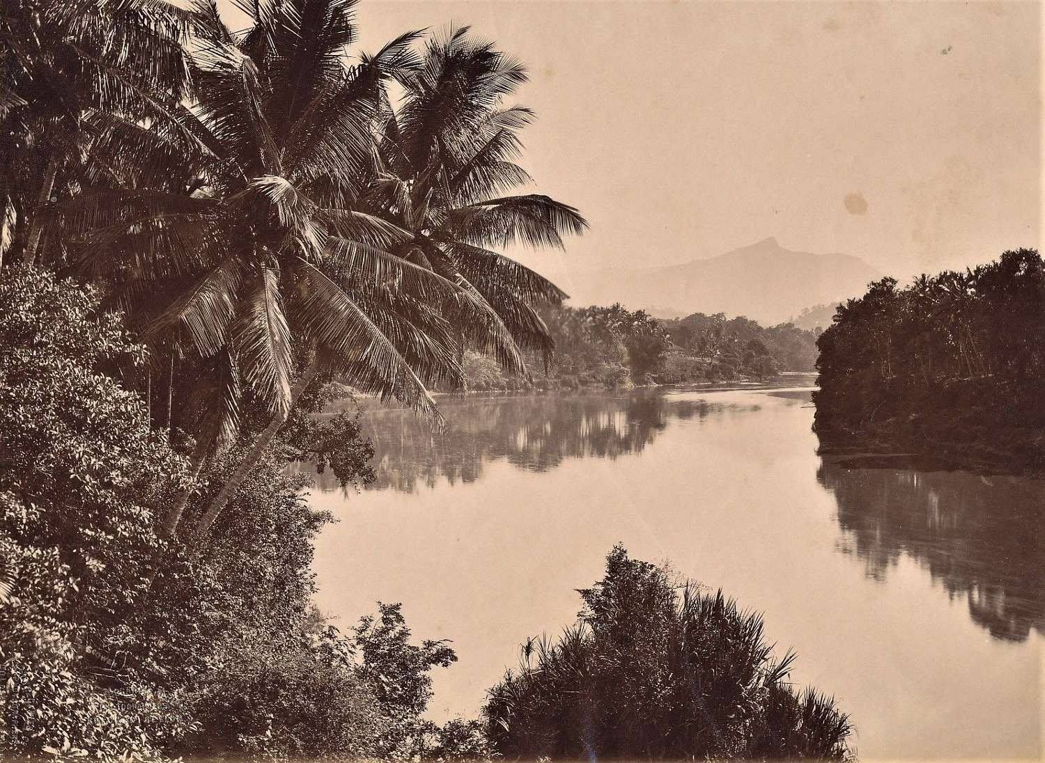 View in Ceylon By Apothecaries& Co Ltd C1880