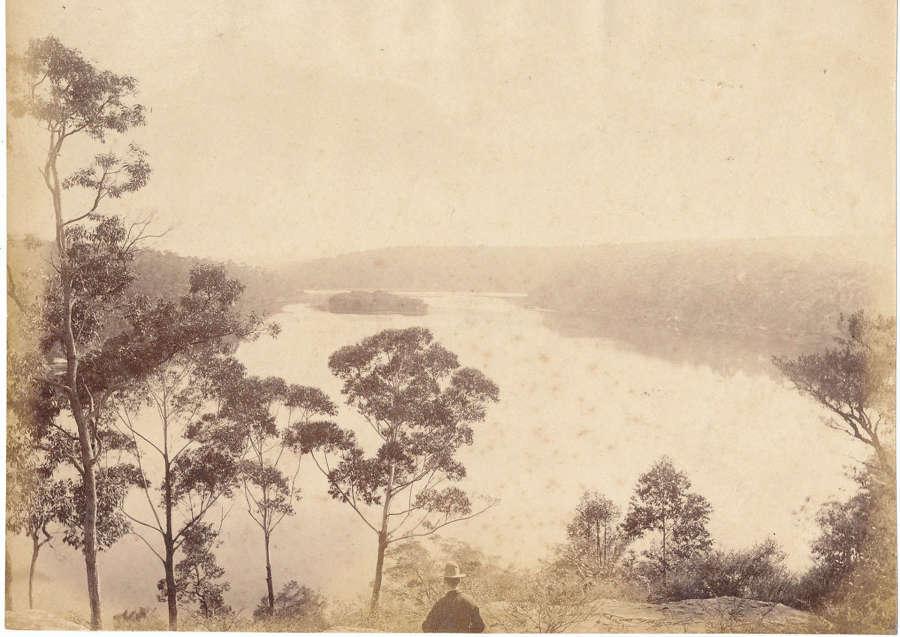 View of Australia Sydney By John Paine C1880